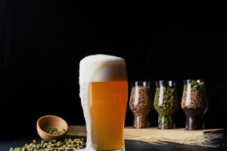 """Beer """"Hoppy Lager"""""""