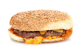 Sandwich Toasted burger